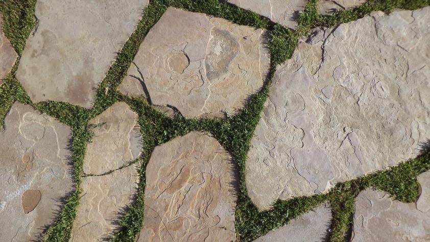 Grass + Stone